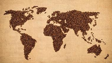 咖啡地图, 广州市咖啡学校