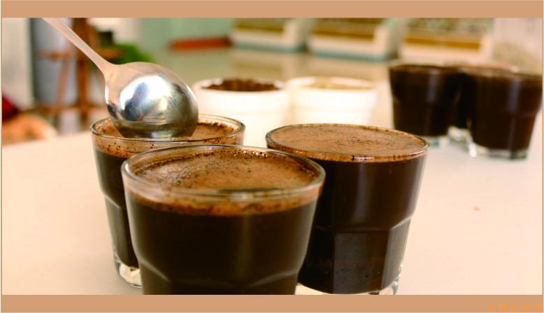 EHS咖啡学院,咖啡术语,咖啡知识