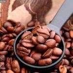 EHS咖啡学院,儿童咖啡,咖啡